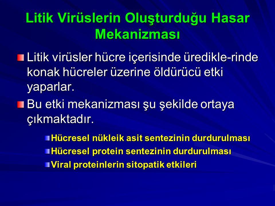 Litik Virüslerin Oluşturduğu Hasar Mekanizması