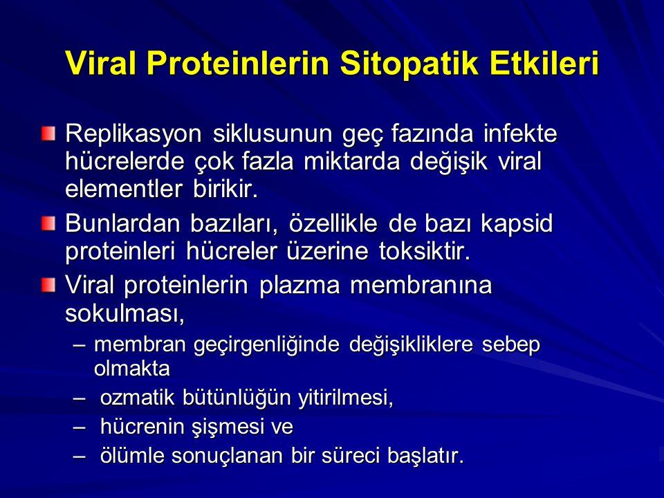 Viral Proteinlerin Sitopatik Etkileri