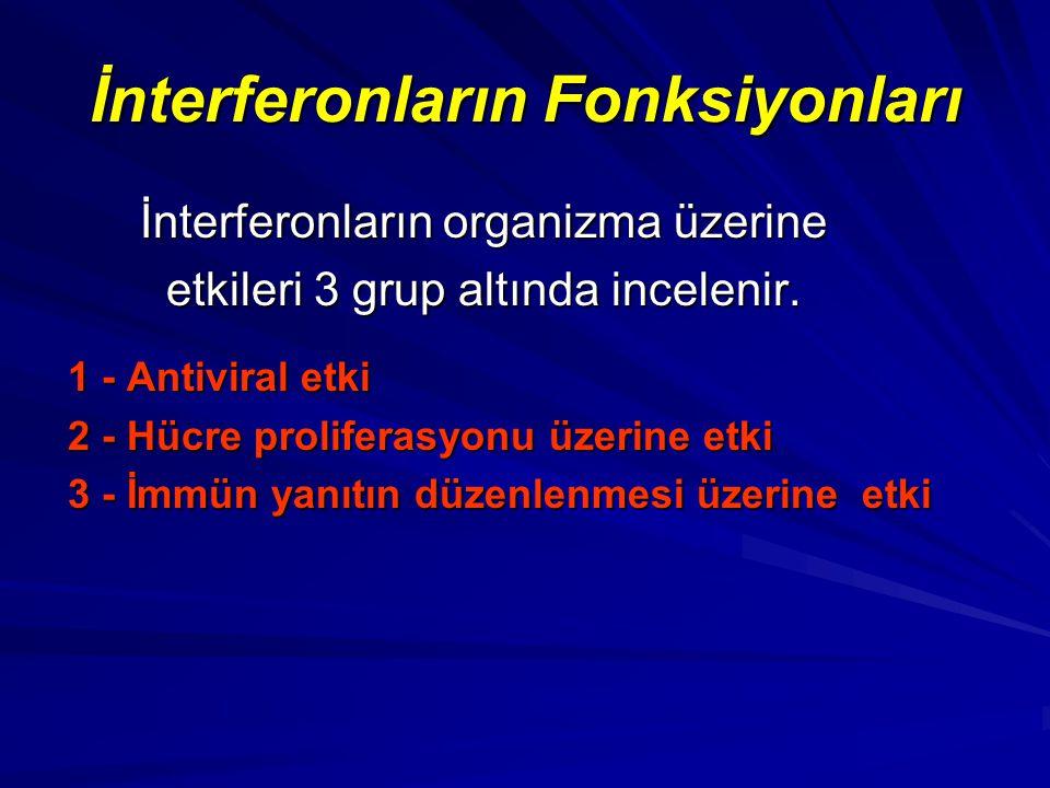İnterferonların Fonksiyonları