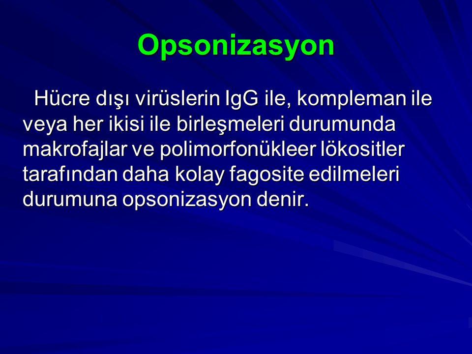 Opsonizasyon