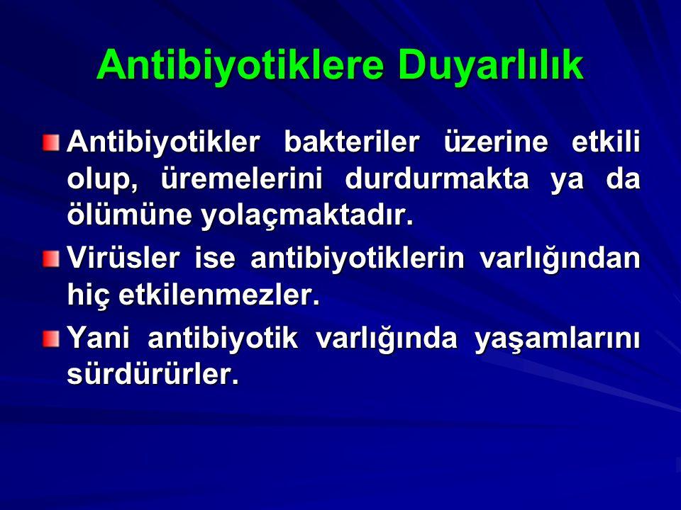 Antibiyotiklere Duyarlılık