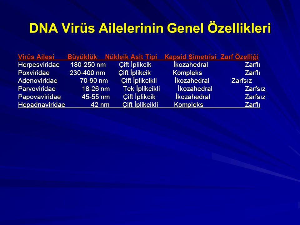DNA Virüs Ailelerinin Genel Özellikleri