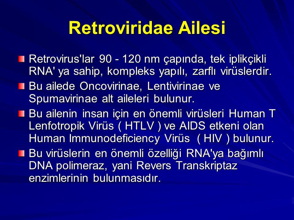 Retroviridae Ailesi Retrovirus lar 90 - 120 nm çapında, tek iplikçikli RNA ya sahip, kompleks yapılı, zarflı virüslerdir.