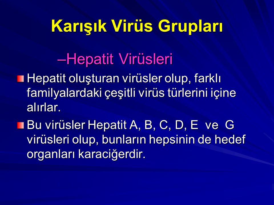 Karışık Virüs Grupları
