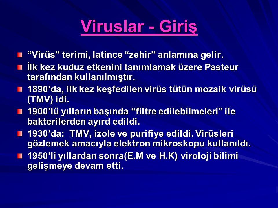 Viruslar - Giriş Virüs terimi, latince zehir anlamına gelir.