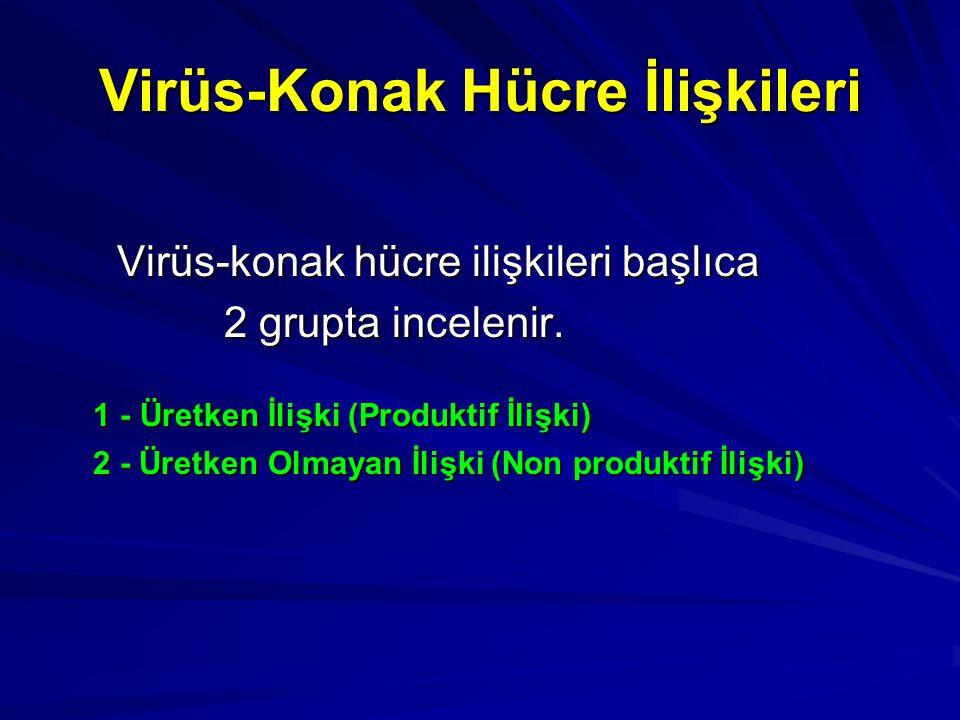 Virüs-Konak Hücre İlişkileri
