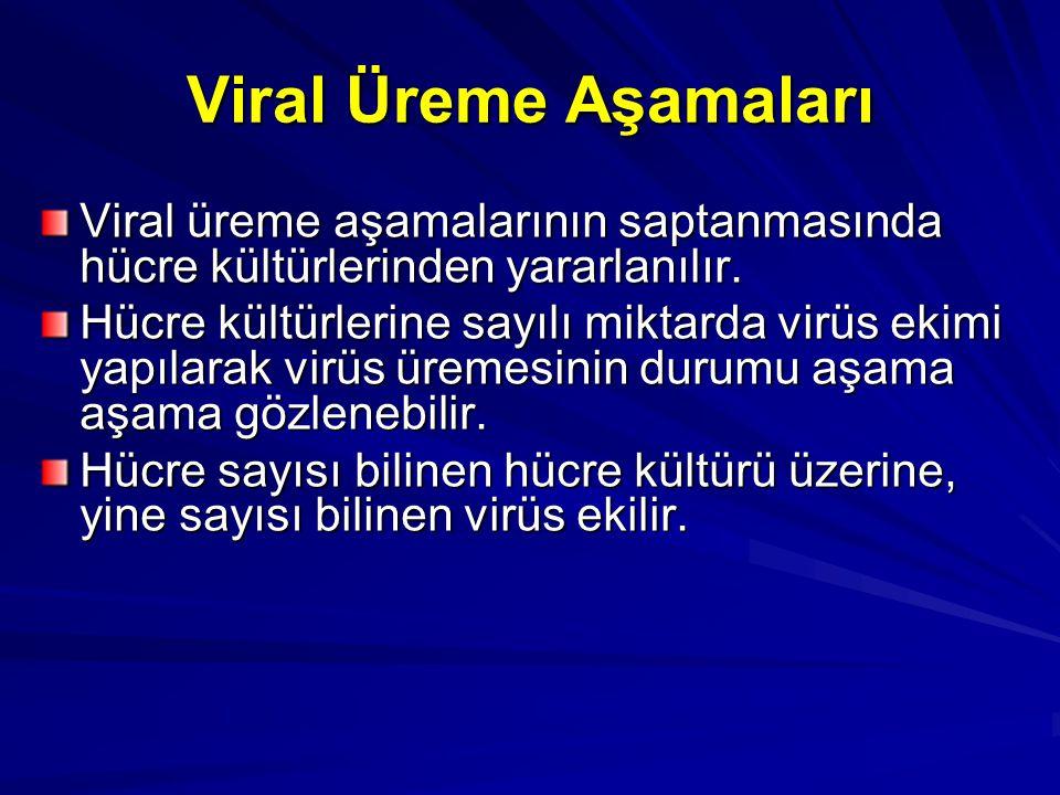 Viral Üreme Aşamaları Viral üreme aşamalarının saptanmasında hücre kültürlerinden yararlanılır.