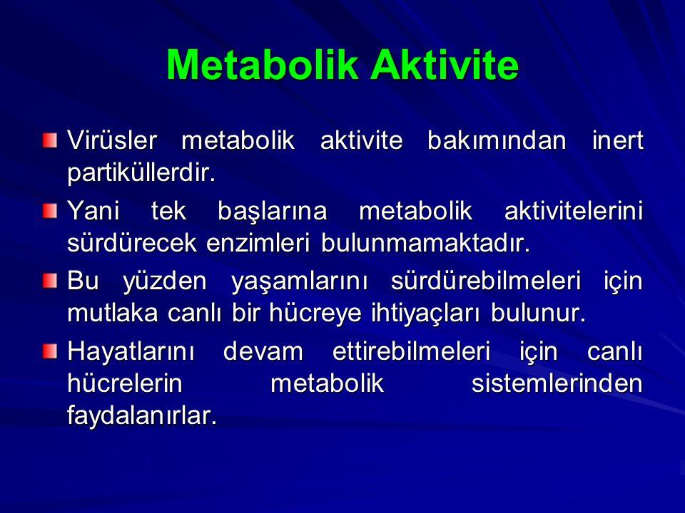Metabolik Aktivite Virüsler metabolik aktivite bakımından inert partiküllerdir.
