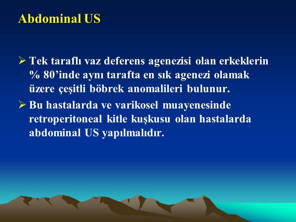 Abdominal US