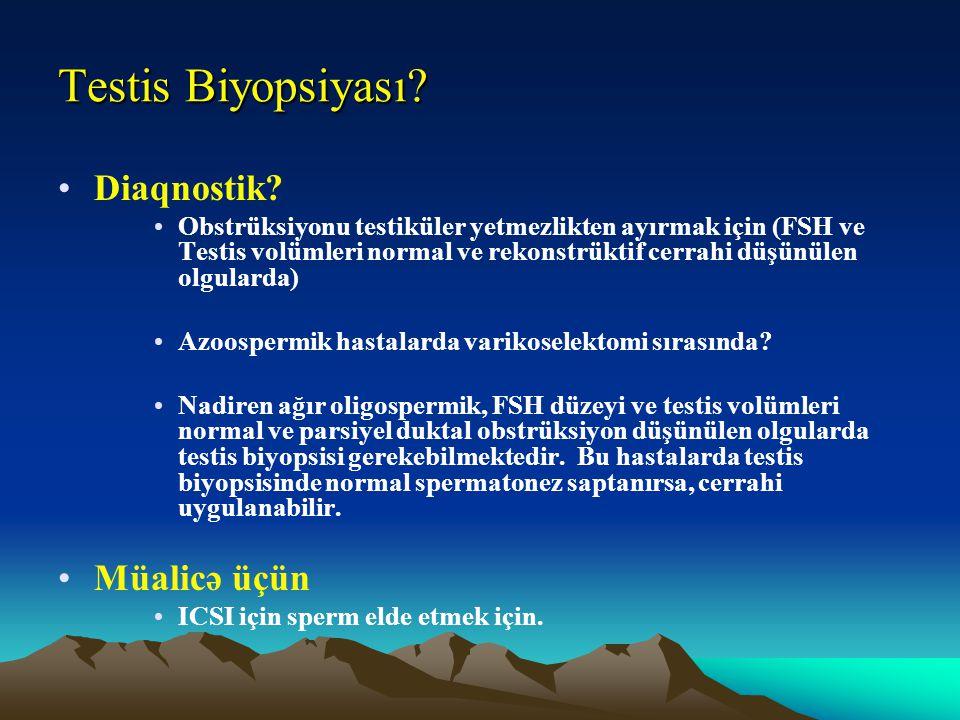 Testis Biyopsiyası Diaqnostik Müalicə üçün