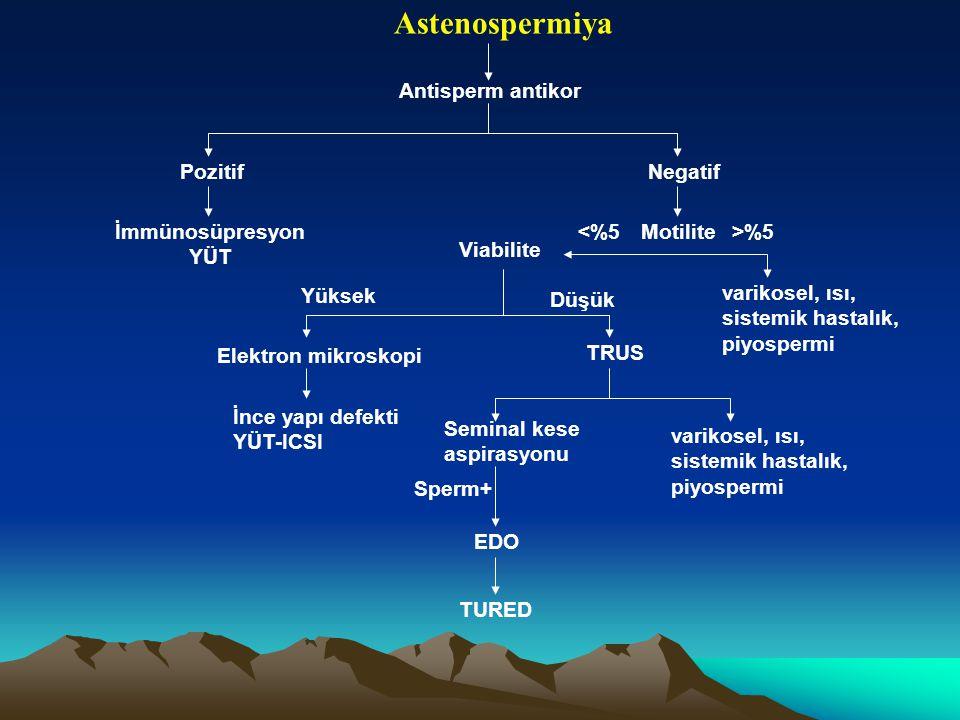 Astenospermiya Antisperm antikor Pozitif Negatif İmmünosüpresyon YÜT