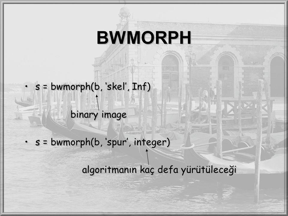 BWMORPH s = bwmorph(b, 'skel', Inf) binary image