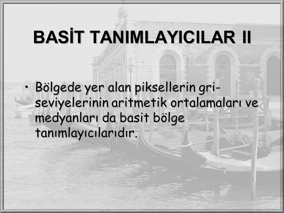BASİT TANIMLAYICILAR II