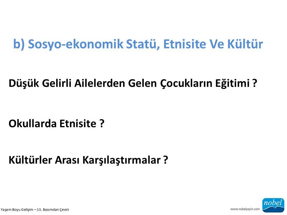 b) Sosyo-ekonomik Statü, Etnisite Ve Kültür