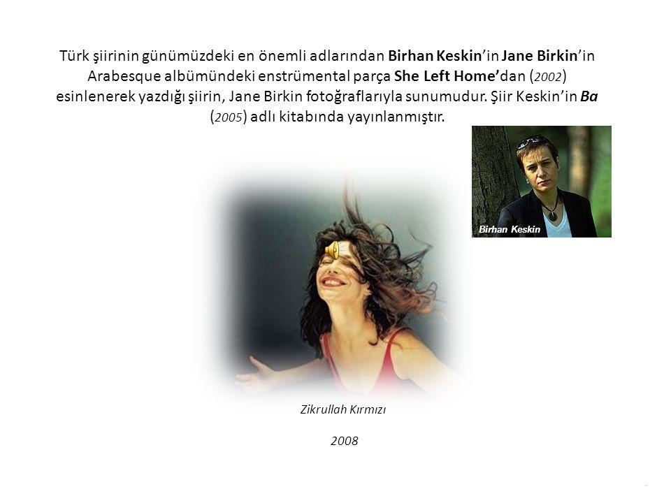 Türk şiirinin günümüzdeki en önemli adlarından Birhan Keskin'in Jane Birkin'in