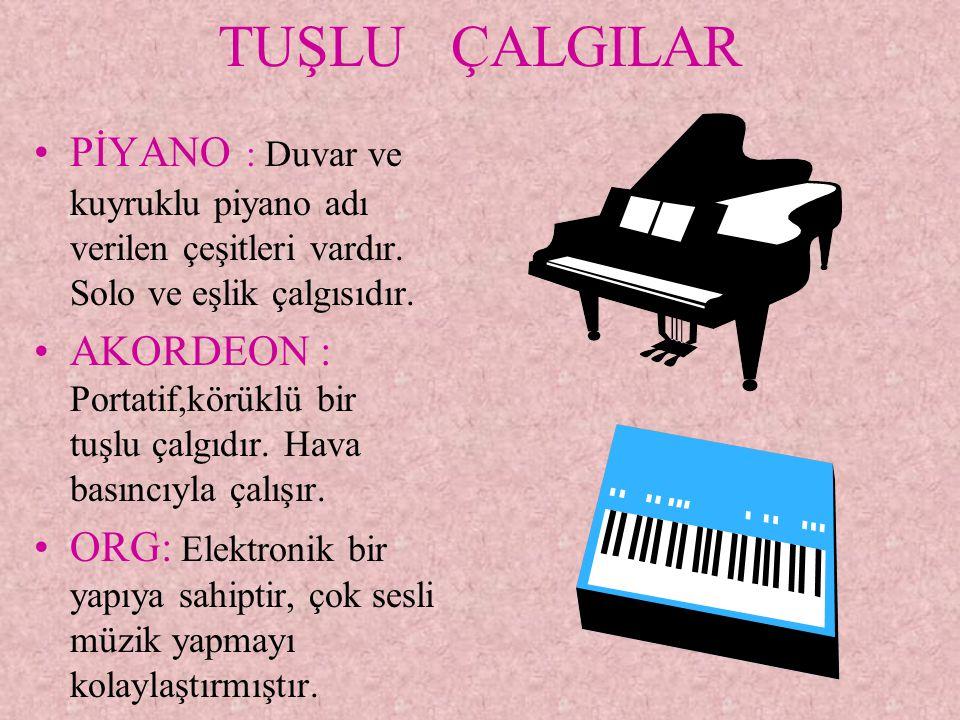 TUŞLU ÇALGILAR PİYANO : Duvar ve kuyruklu piyano adı verilen çeşitleri vardır. Solo ve eşlik çalgısıdır.