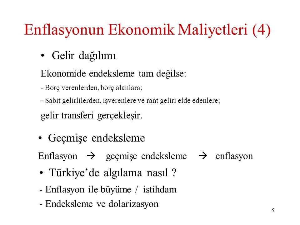 Enflasyonun Ekonomik Maliyetleri (4)