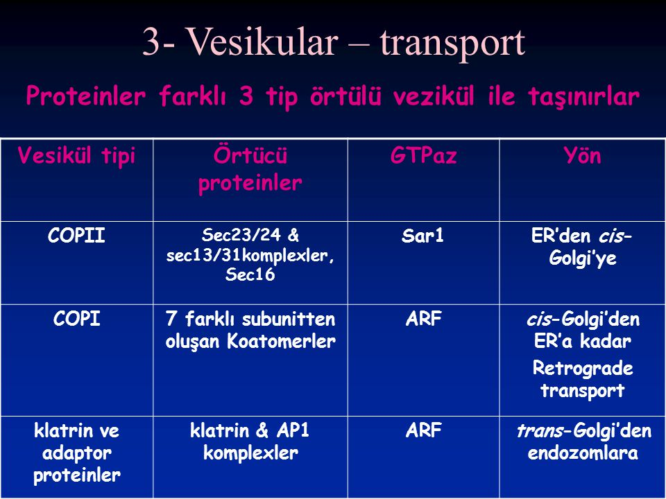 3- Vesikular – transport