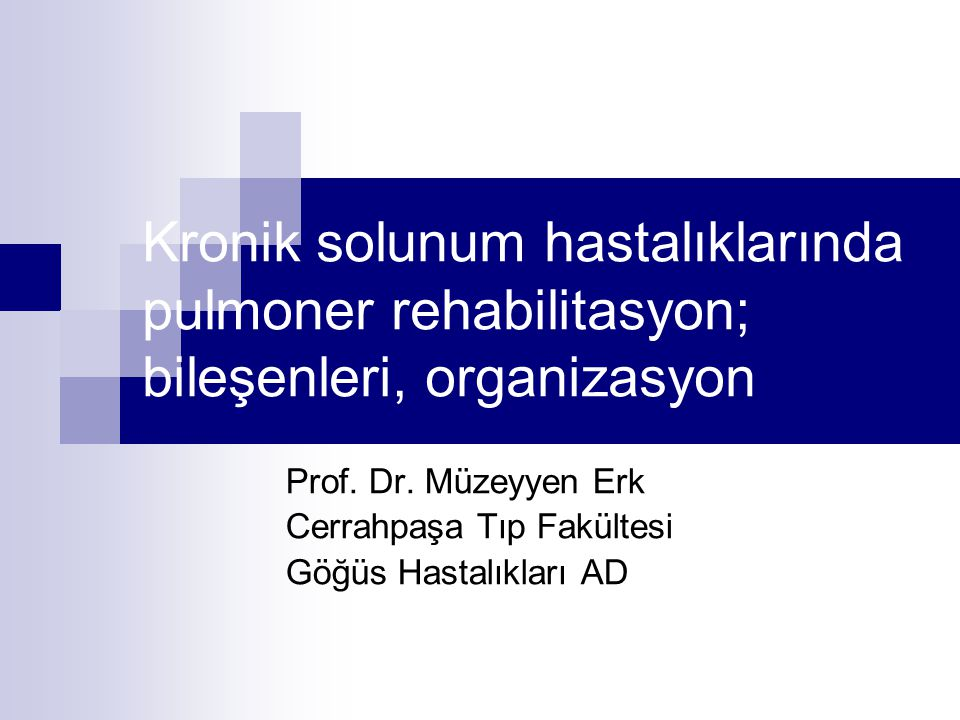 Prof. Dr. Müzeyyen Erk Cerrahpaşa Tıp Fakültesi Göğüs Hastalıkları AD