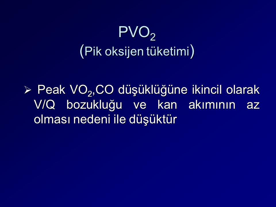 PVO2 (Pik oksijen tüketimi)