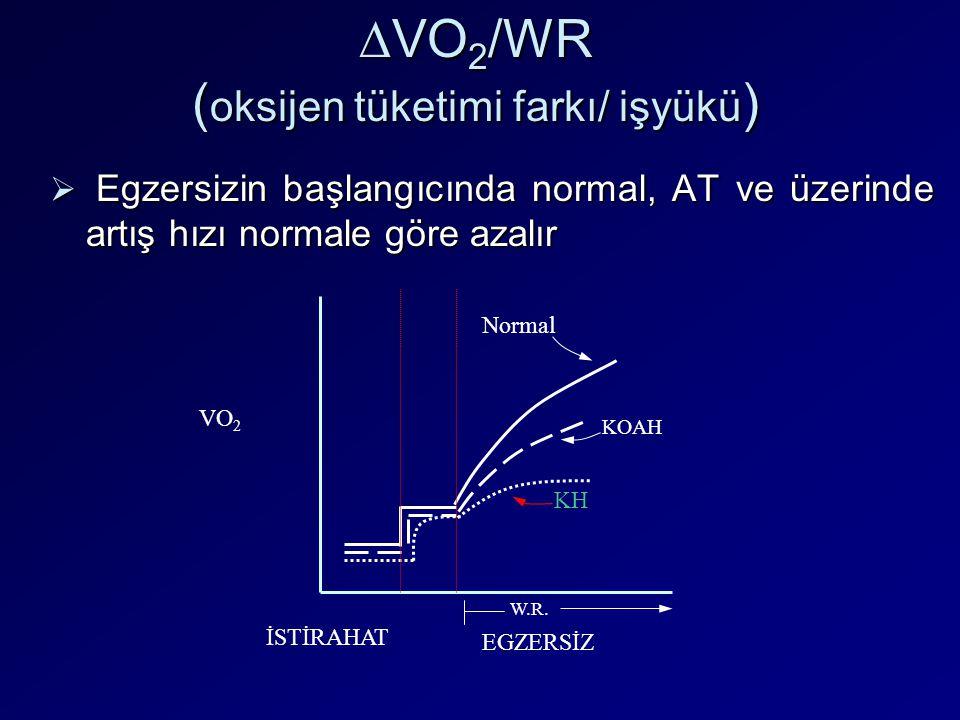 ∆VO2/WR (oksijen tüketimi farkı/ işyükü)