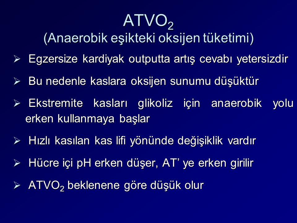 ATVO2 (Anaerobik eşikteki oksijen tüketimi)