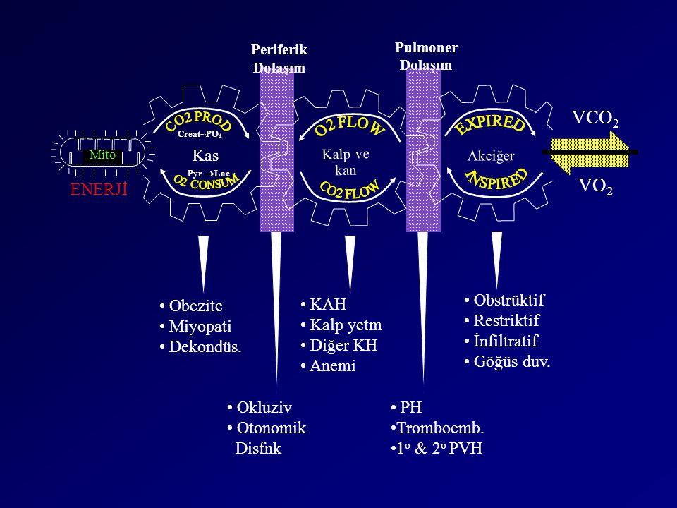 VCO2 VO2 Kas ENERJİ Obezite Miyopati Dekondüs. KAH Kalp yetm Diğer KH
