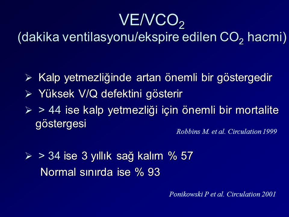 VE/VCO2 (dakika ventilasyonu/ekspire edilen CO2 hacmi)