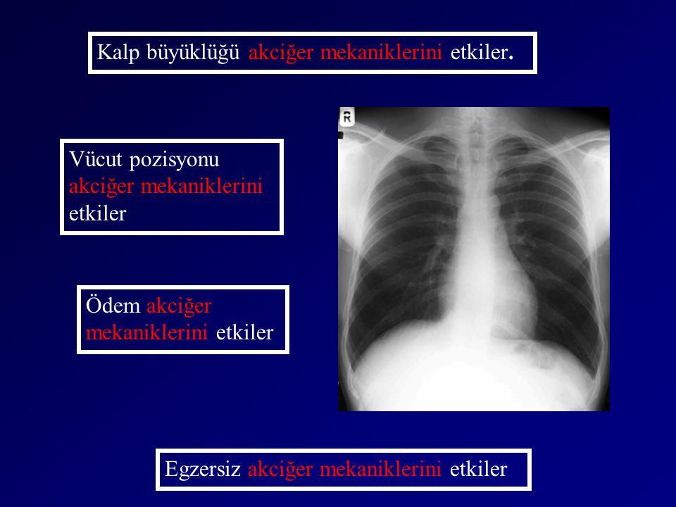 Kalp büyüklüğü akciğer mekaniklerini etkiler.