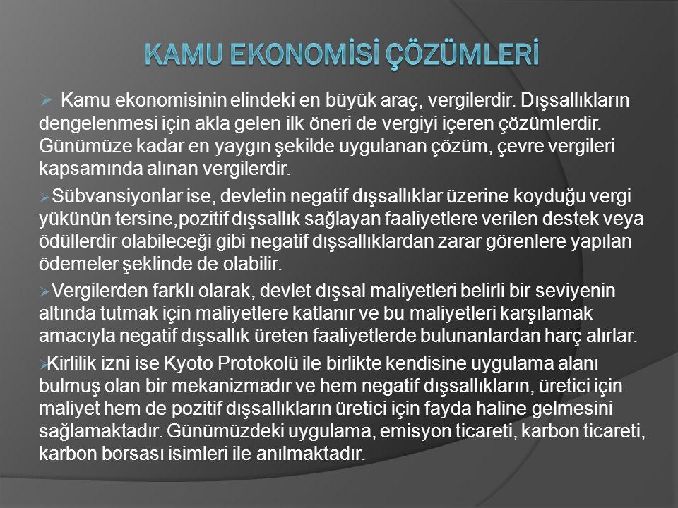 Kamu Ekonomİsİ Çözümlerİ