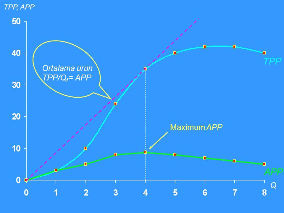 TPP, APP TPP Ortalama ürün TPP/Qf = APP Maximum APP APP Q