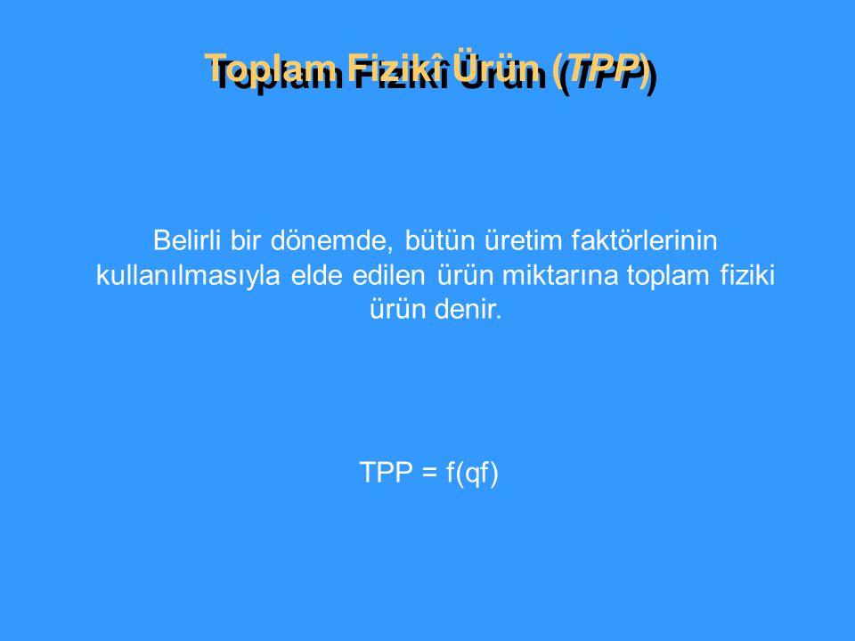 Toplam Fizikî Ürün (TPP)