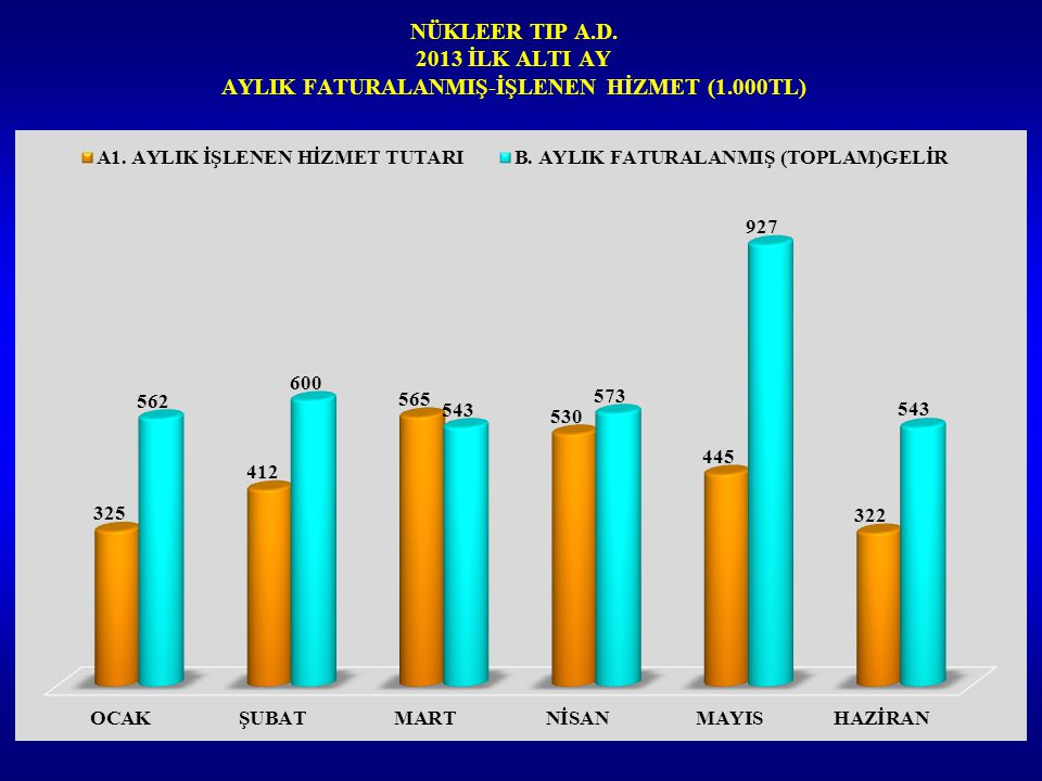 NÜKLEER TIP A.D. 2013 İLK ALTI AY AYLIK FATURALANMIŞ-İŞLENEN HİZMET (1.000TL)