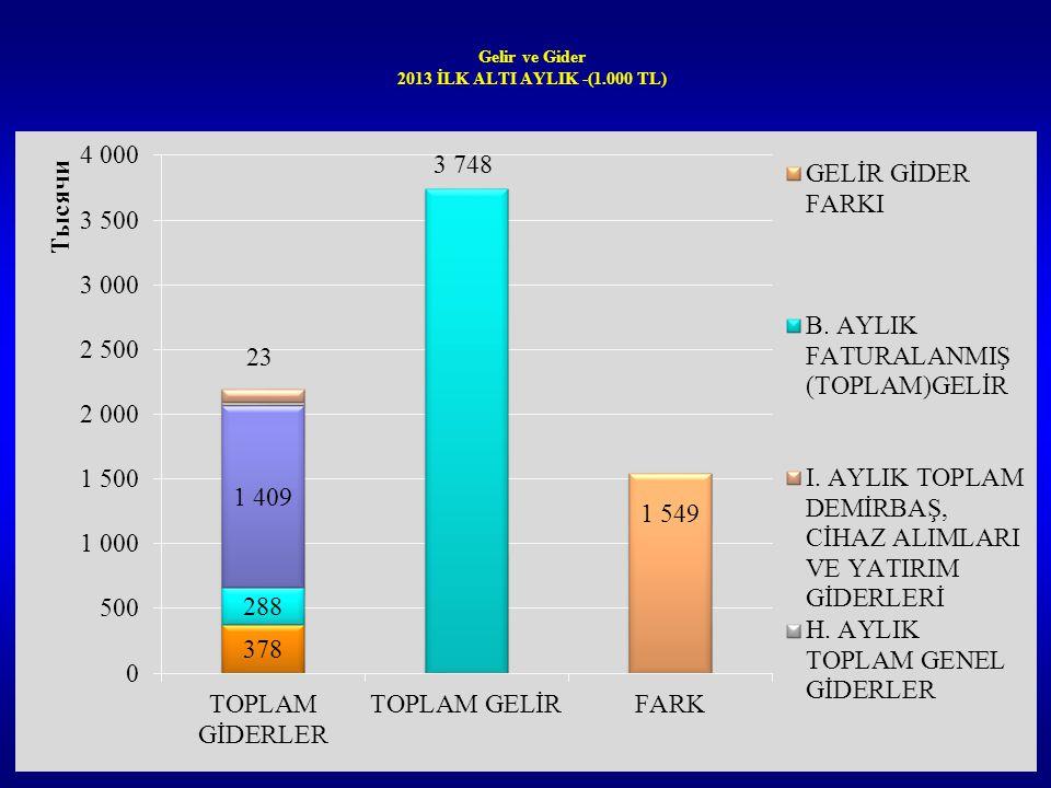 Gelir ve Gider 2013 İLK ALTI AYLIK -(1.000 TL)