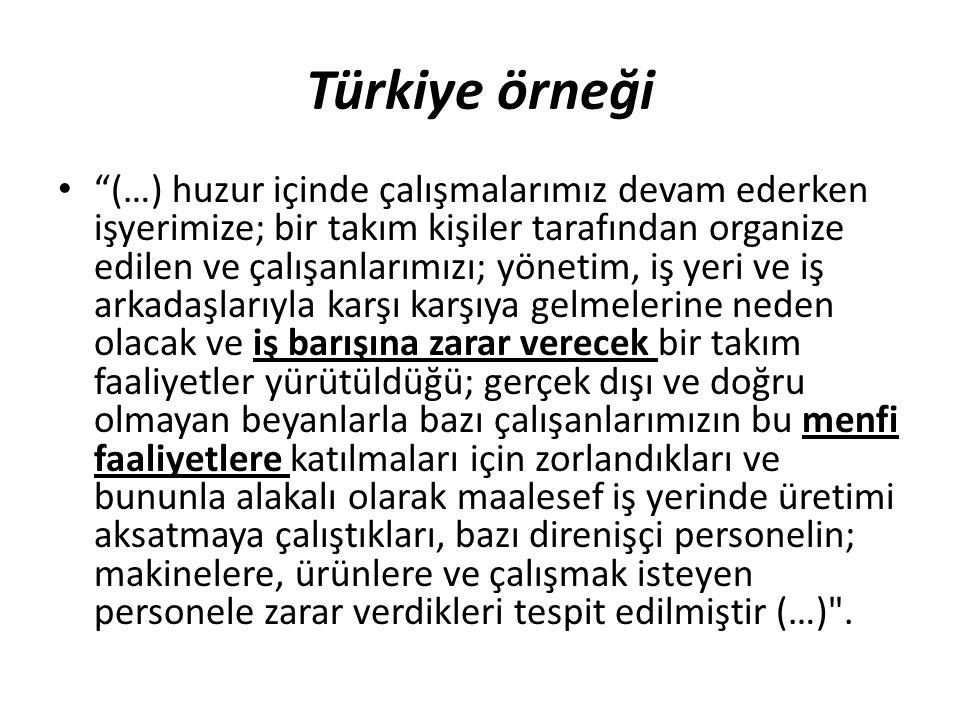 Türkiye örneği