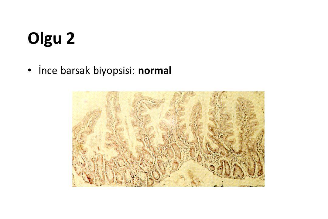 Olgu 2 İnce barsak biyopsisi: normal