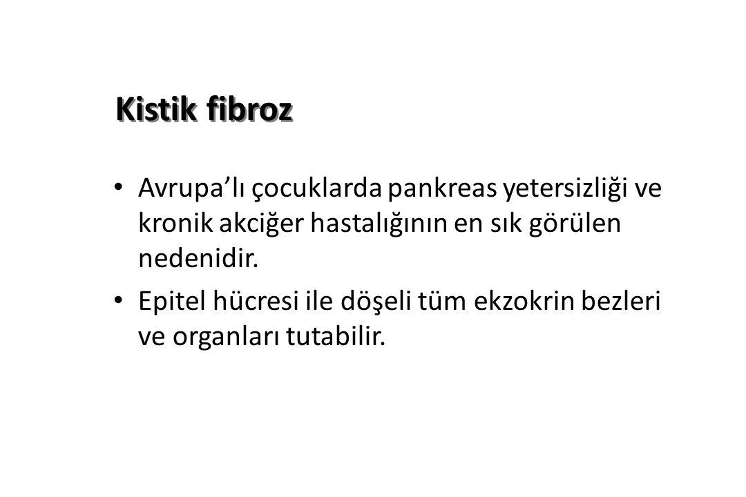 Kistik fibroz Avrupa'lı çocuklarda pankreas yetersizliği ve kronik akciğer hastalığının en sık görülen nedenidir.