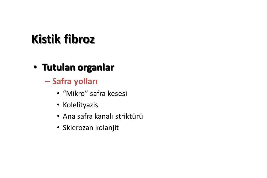 Kistik fibroz Tutulan organlar Safra yolları Mikro safra kesesi