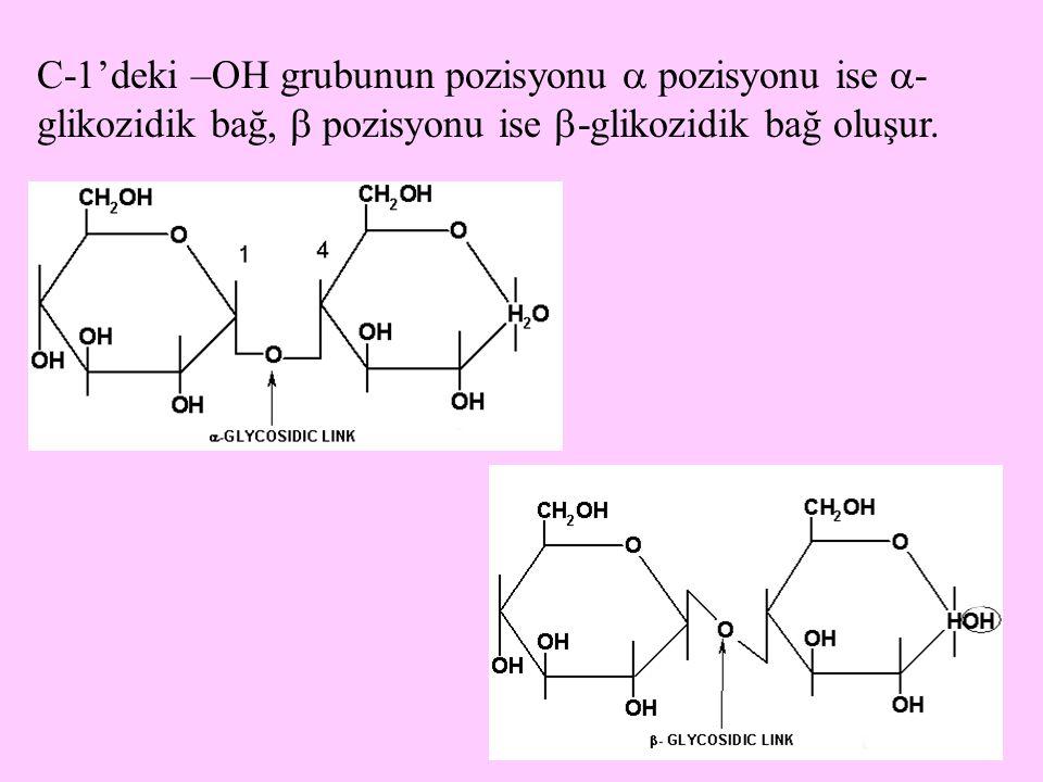 C-1'deki –OH grubunun pozisyonu  pozisyonu ise -glikozidik bağ,  pozisyonu ise -glikozidik bağ oluşur.