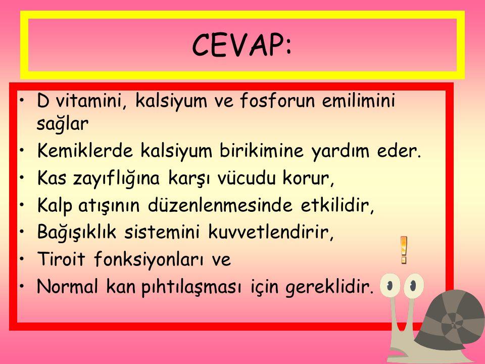 CEVAP: D vitamini, kalsiyum ve fosforun emilimini sağlar