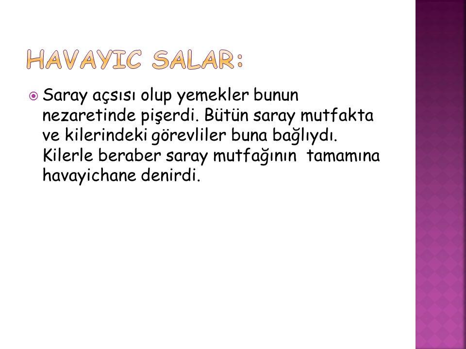 Havayic Salar: