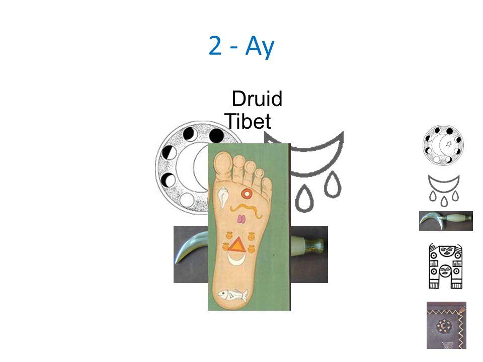 2 - Ay Druid Tibet