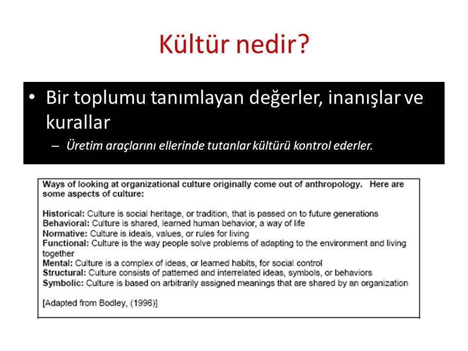 Kültür nedir Bir toplumu tanımlayan değerler, inanışlar ve kurallar