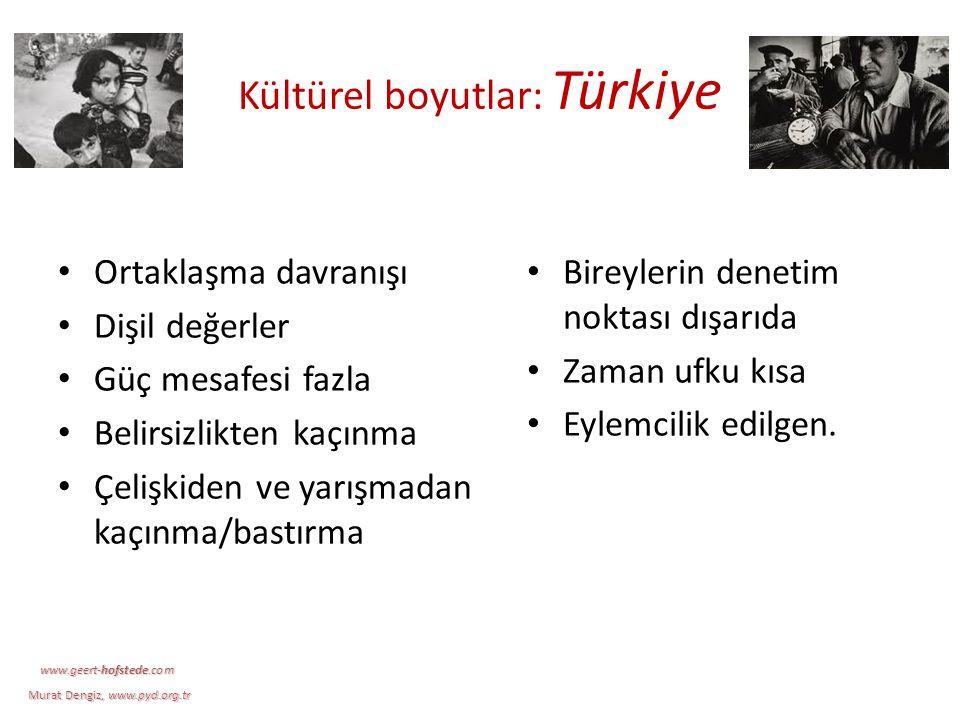 Kültürel boyutlar: Türkiye