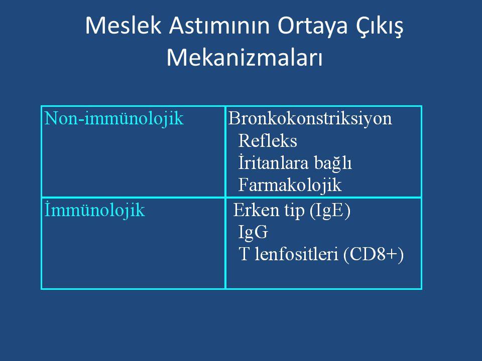 Meslek Astımının Ortaya Çıkış Mekanizmaları