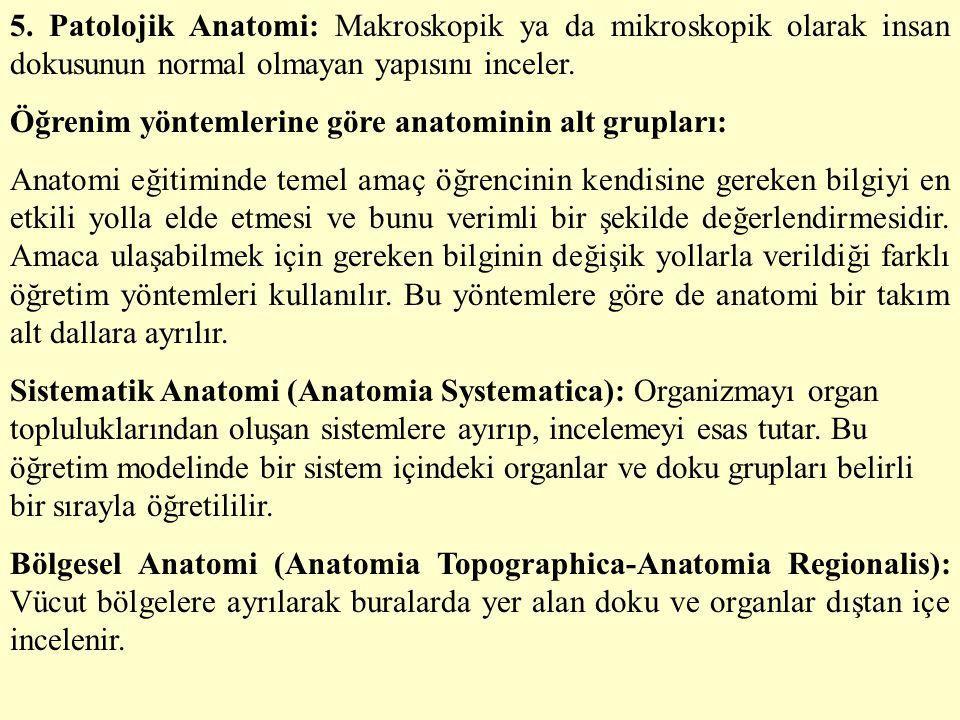 5. Patolojik Anatomi: Makroskopik ya da mikroskopik olarak insan dokusunun normal olmayan yapısını inceler.