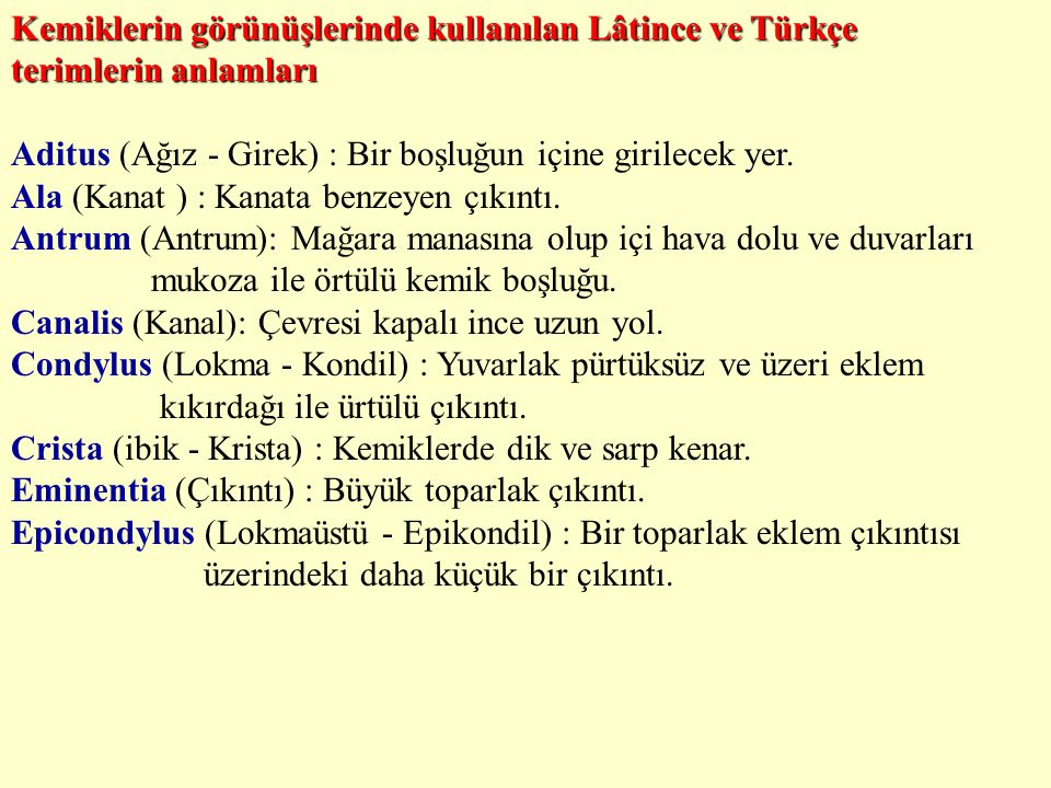 Kemiklerin görünüşlerinde kullanılan Lâtince ve Türkçe terimlerin anlamları