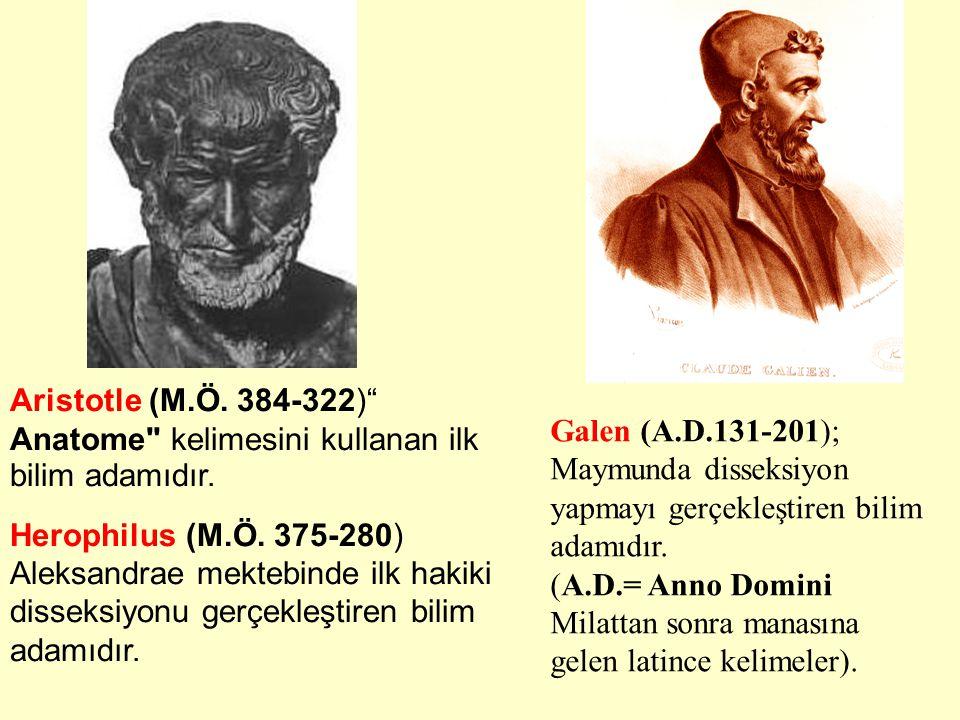 Aristotle (M.Ö. 384-322) Anatome kelimesini kullanan ilk bilim adamıdır.