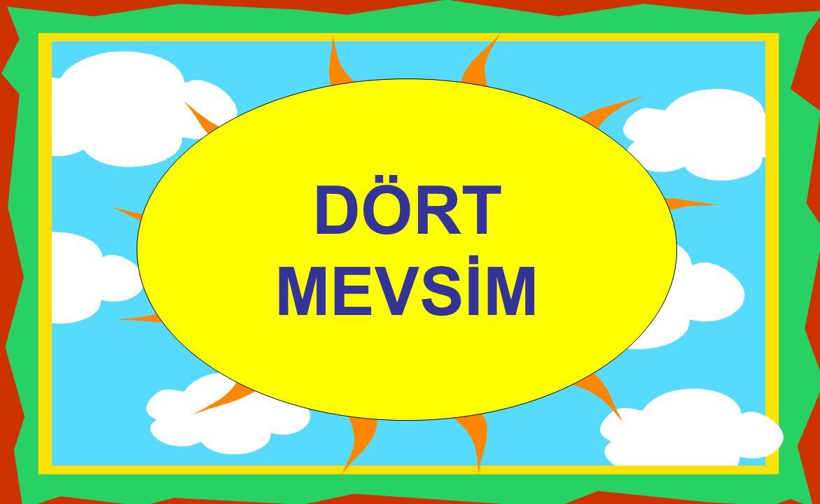 DÖRT MEVSİM