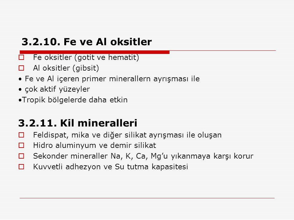 3.2.10. Fe ve Al oksitler 3.2.11. Kil mineralleri